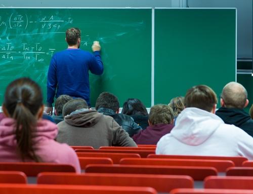 Grund 7: Die Möglichkeit des Mentoring Programms