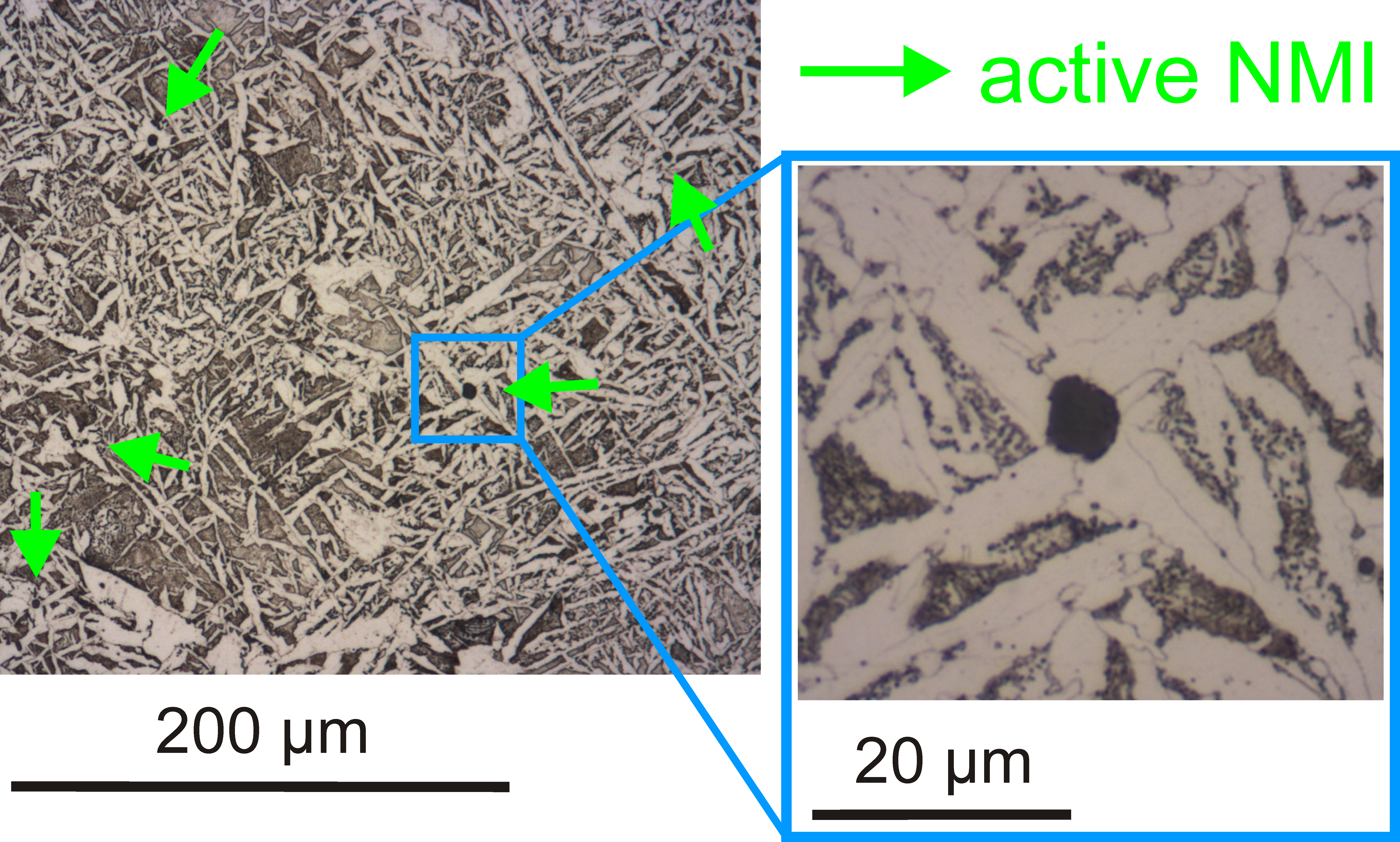 Acicular ferrite nucleating on active non-metallic inclusions, forming a fine grained, interlocking microstructure